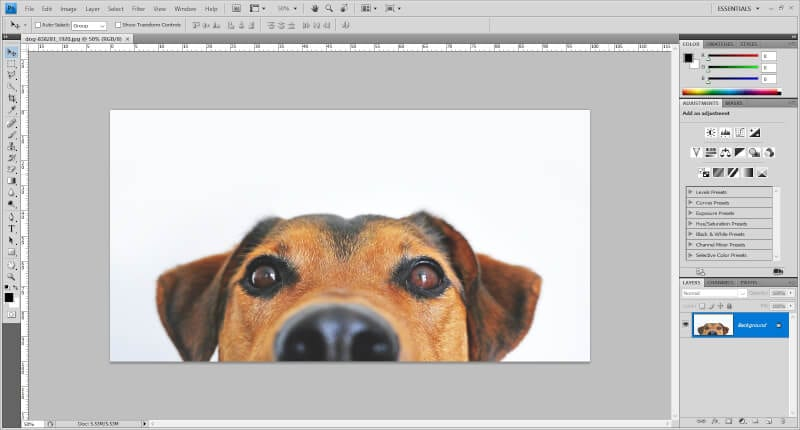 image in Photoshop - How to Invert Colors in Photoshop 5