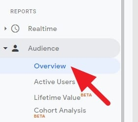 audience overview - How to See How Many Visitors Per Month on Google Analytics 7