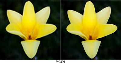 bigjpg - 5 Best Free Tools to Upscale Image Without Losing Quality 7